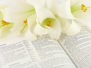 Celebrating-Holy-Week-Catholic-Resources