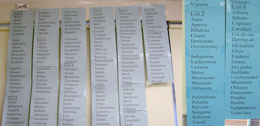 A vocabulary word wall is an amazing teaching tool. The word wall will ensure your students are never at loss for words!