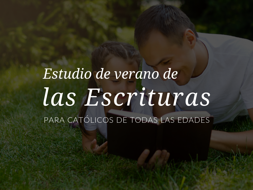 estudio-de-verano-de-las-escrituras-para-catolicos