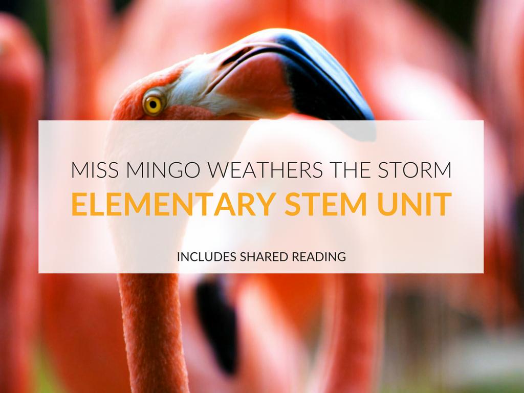 elementary-stem-unit-miss-mingo-weathers-the-storm.png