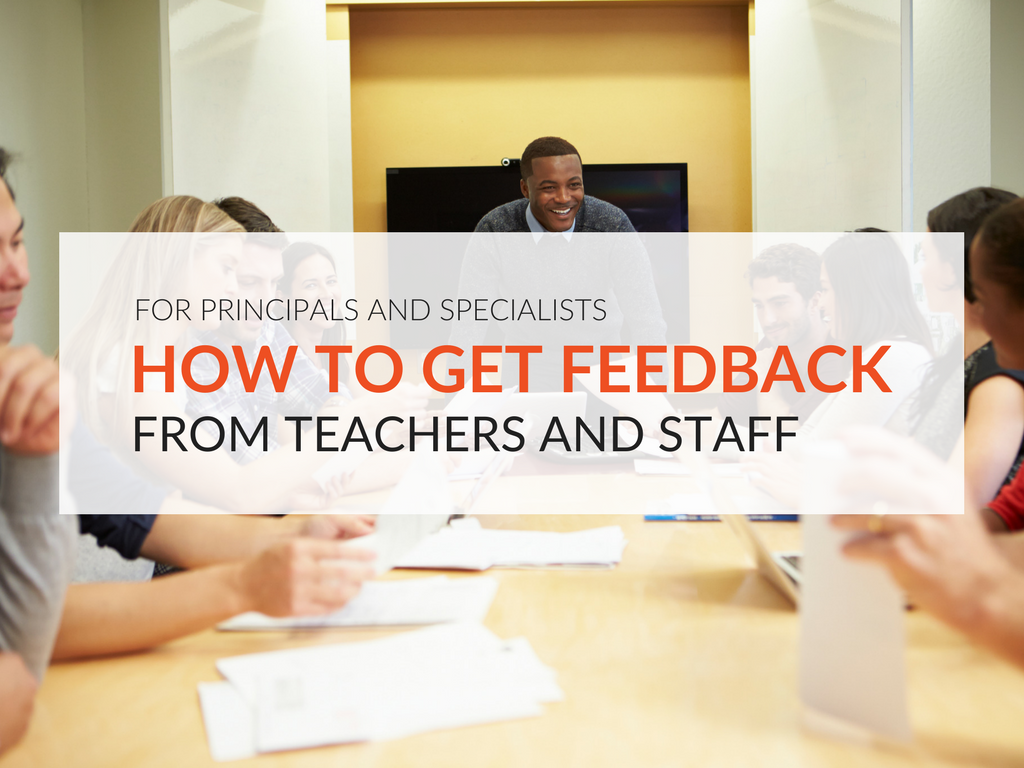 how-to-get-feedback-in-education.png