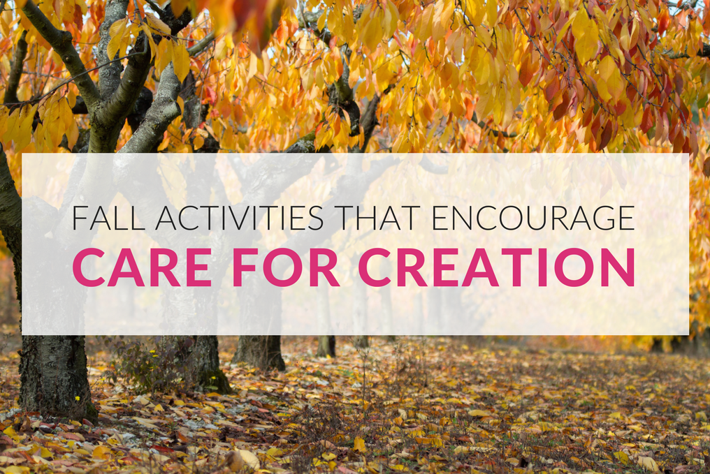 Catholic families will grow closer together as they celebrate the beauty of God's creation during the season of autumn. This seasonal resource includes four multisensory activity suggestions for family members to do together. Ideal for families with preschool and primary aged children, this resource can also be used within the parish and school setting.