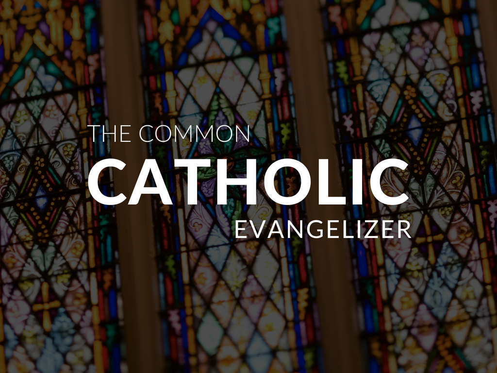 Download a Evangelization Resource Kit for your Catholic school or parish!