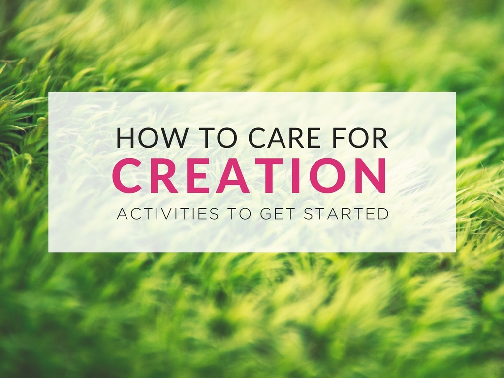how-to-care-for-creation-activities-to-get-started.jpg