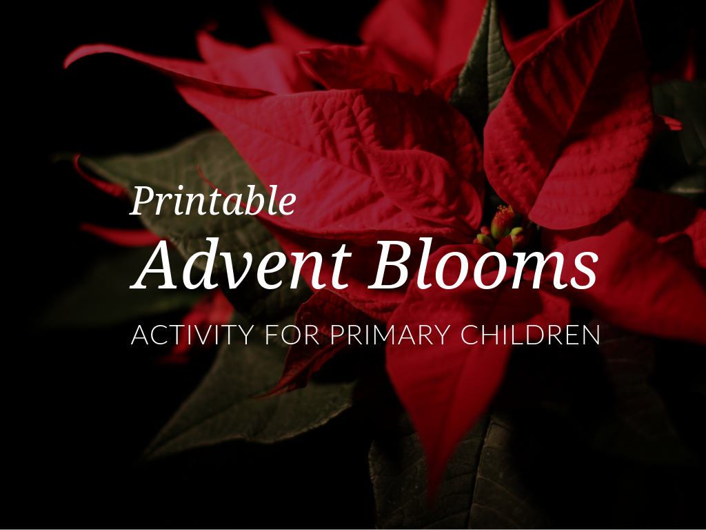 season-of-advent-activity-advent-bloom